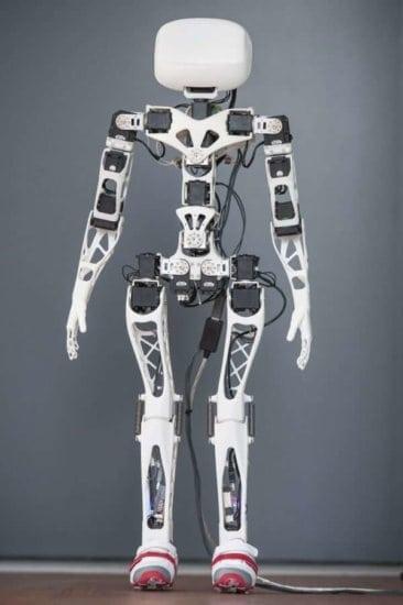 3d-print-robo-2